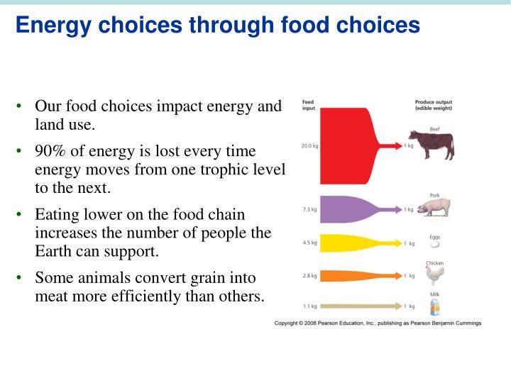 Energy choices through food choices