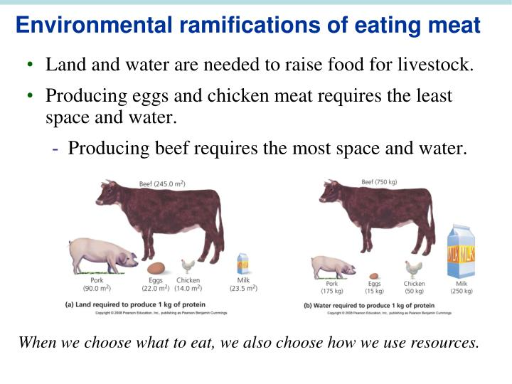 Environmental ramifications of eating meat