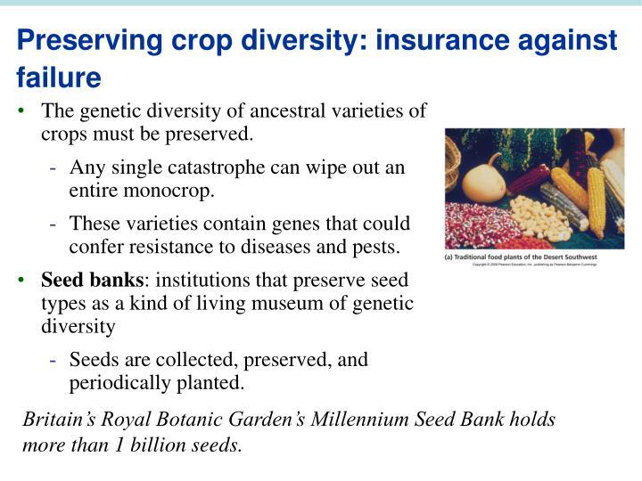 Preserving crop diversity: insurance against failure