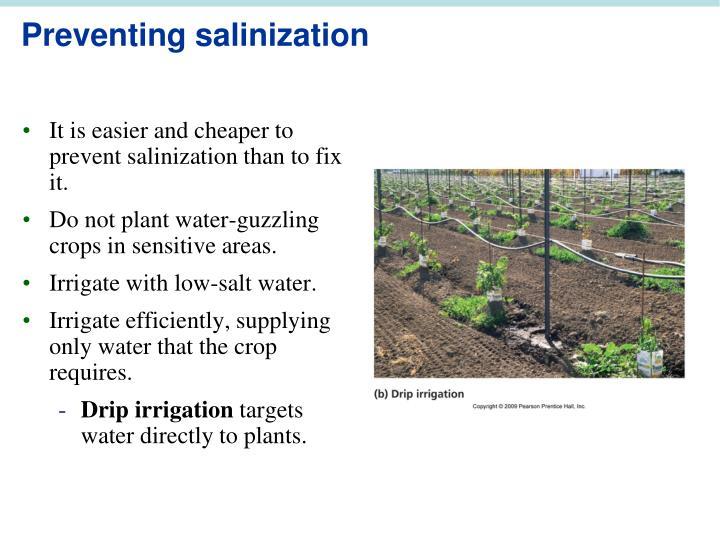 Preventing salinization