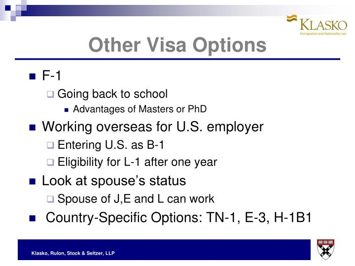 Other Visa Options