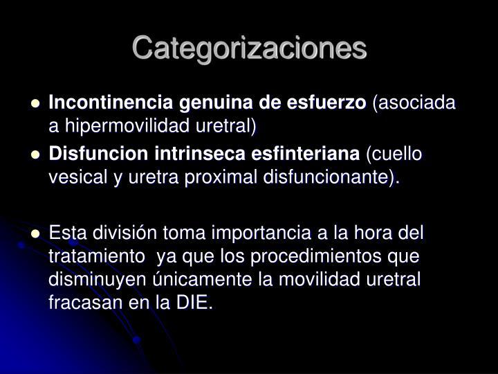 Categorizaciones