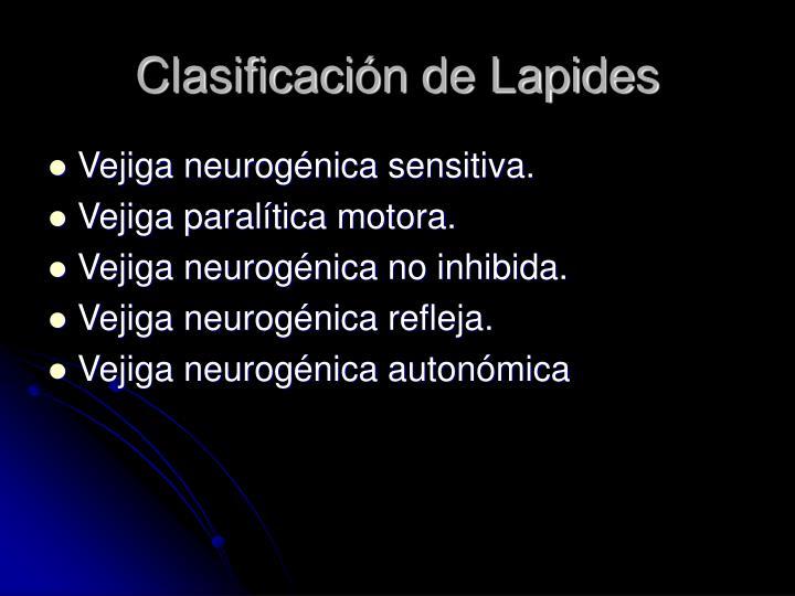 Clasificación de Lapides