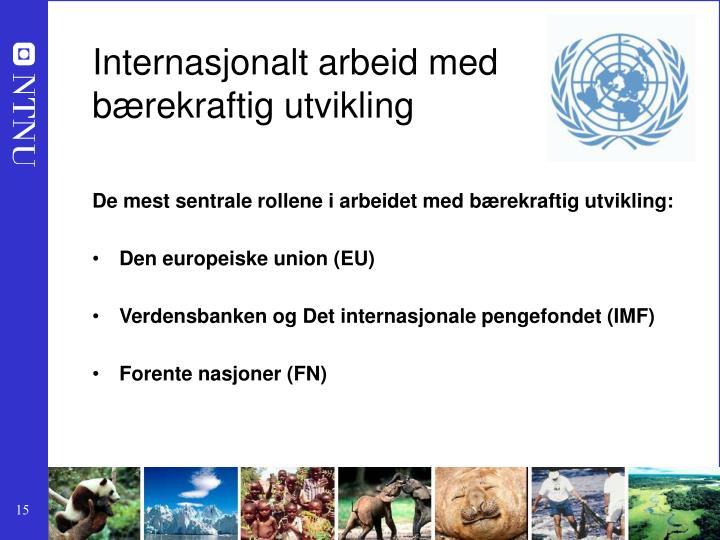 Internasjonalt arbeid med
