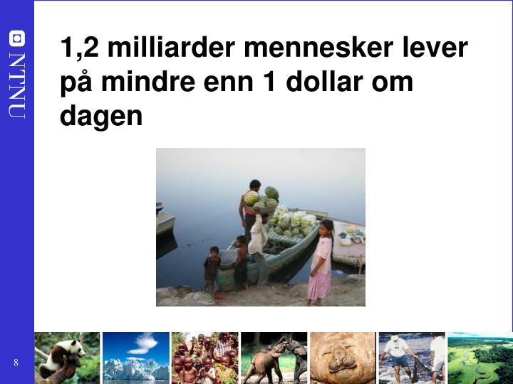 1,2 milliarder mennesker lever på mindre enn 1 dollar om dagen