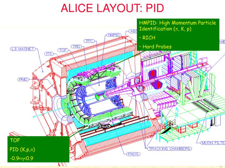 ALICE LAYOUT: PID