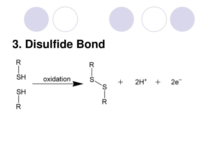 3. Disulfide Bond