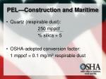 pel construction and maritime