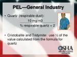 pel general industry