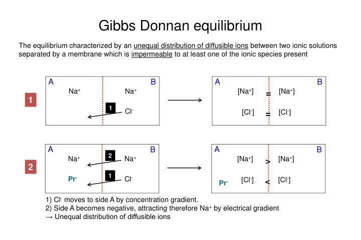 Gibbs Donnan equilibrium