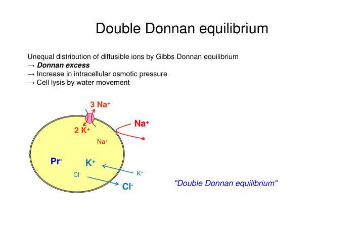 Double Donnan equilibrium