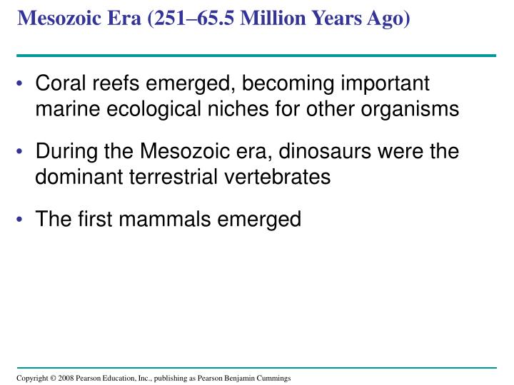 Mesozoic Era (251–65.5 Million Years Ago)