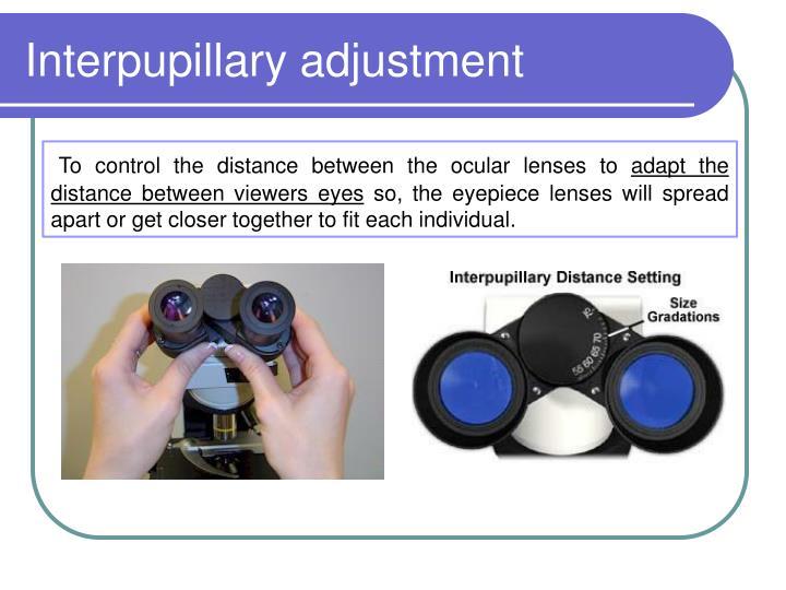 Interpupillary adjustment