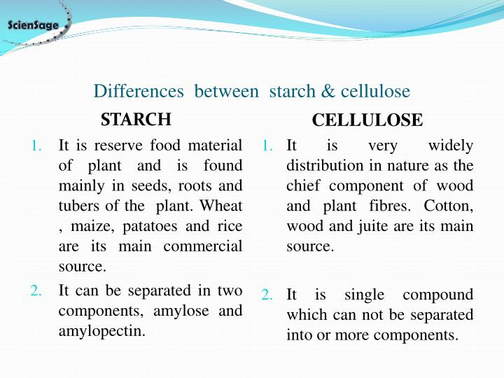Differences  between  starch & cellulose