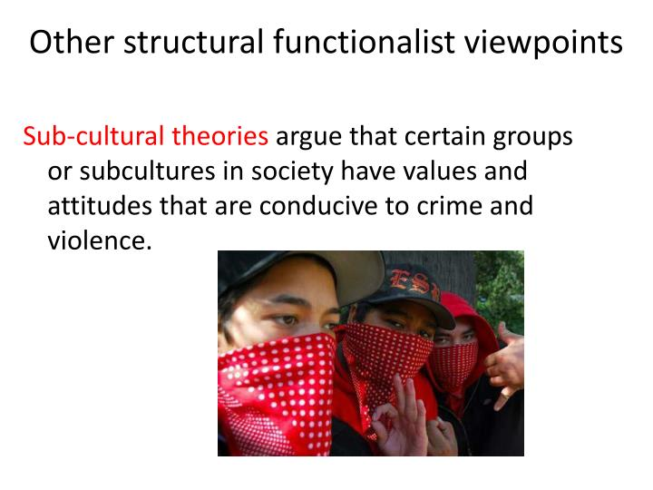 Other structural functionalist viewpoints