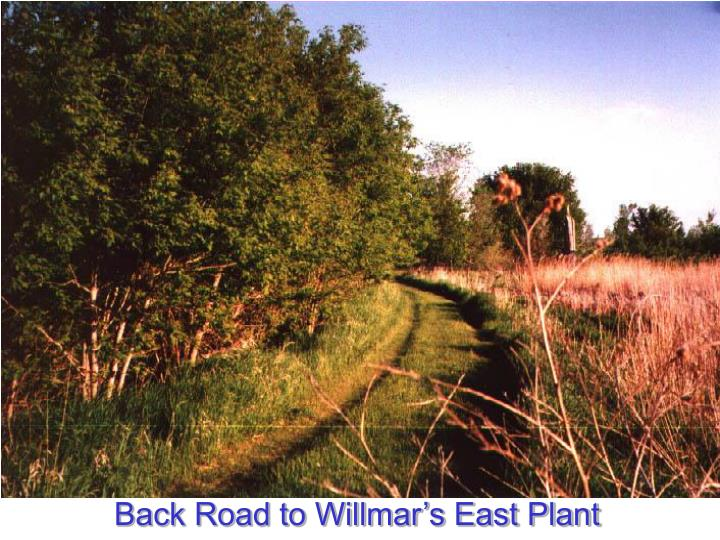 Back Road to Willmar's East Plant