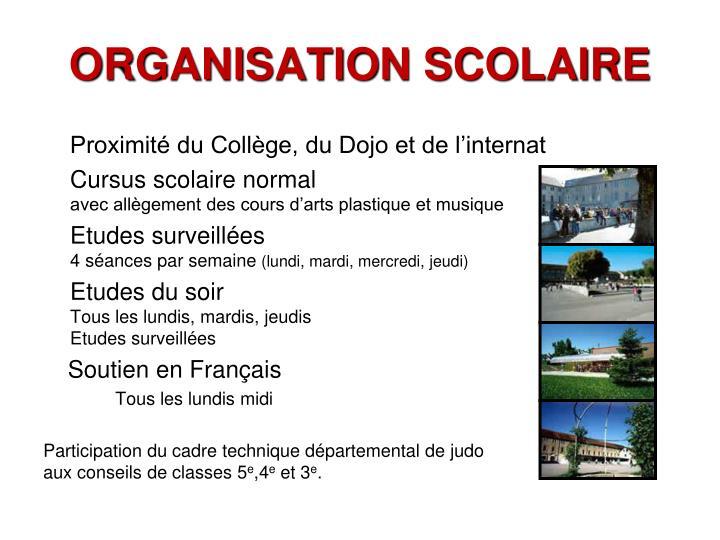 ORGANISATION SCOLAIRE