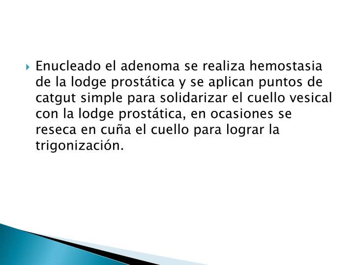 Enucleado el adenoma se realiza hemostasia de la