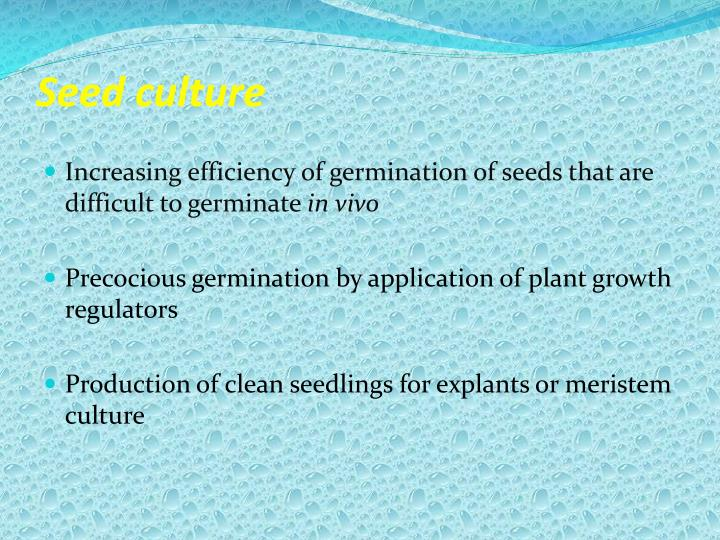 Seed culture