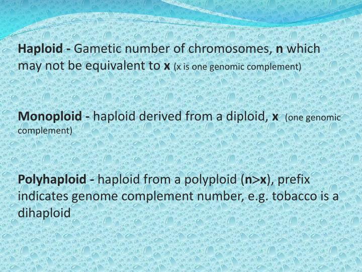 Haploid -