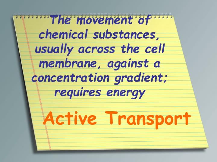 The movement of chemical substances, usually across the cell membrane, against a concentration gradient; requires energy