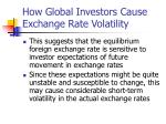 how global investors cause exchange rate volatility1