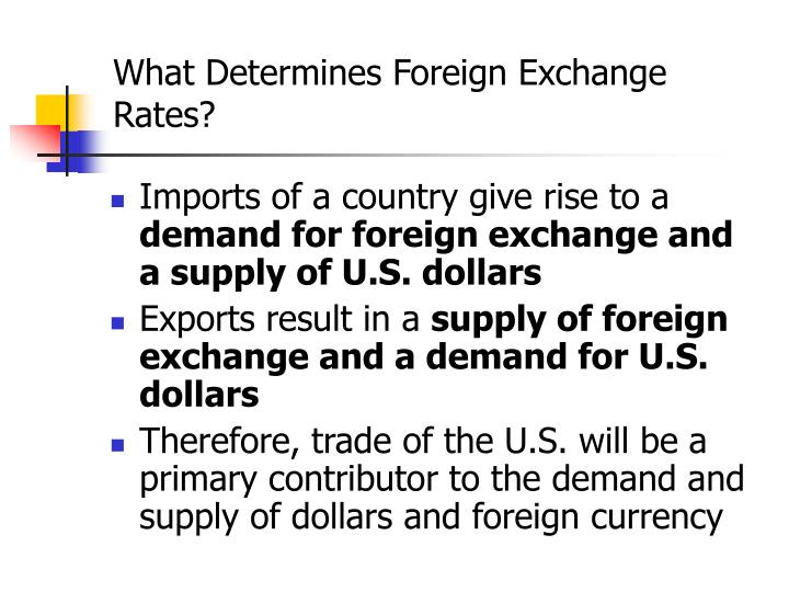 What Determines Foreign Exchange Rates?