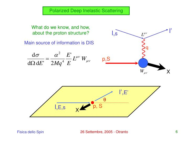 Polarized Deep Inelastic Scattering