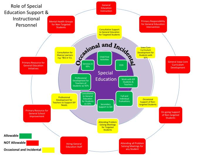 Role of special education support instructional personnel