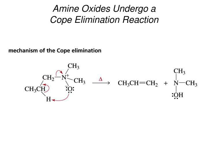 Amine Oxides Undergo a