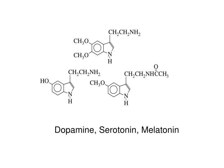 Dopamine, Serotonin, Melatonin