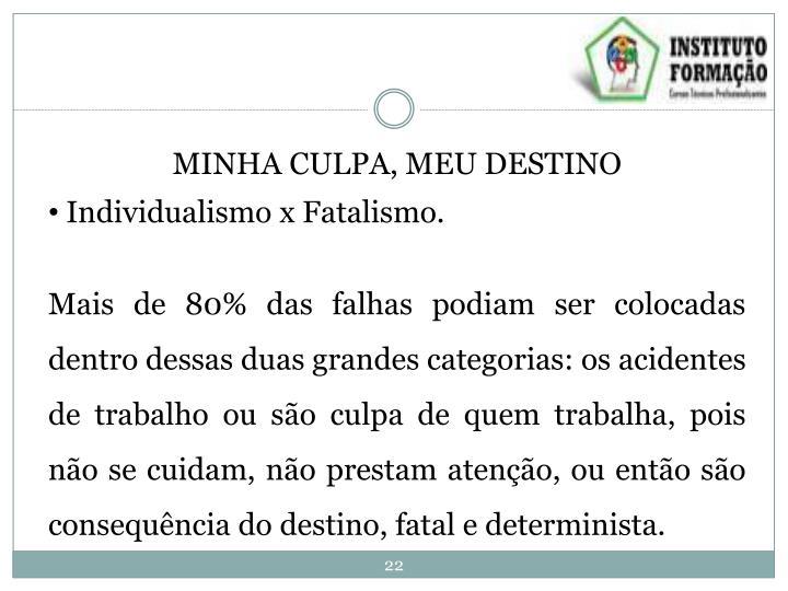 MINHA CULPA, MEU DESTINO