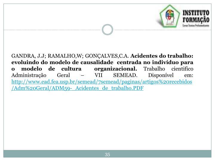 GANDRA, J.J; RAMALHO,W; GONÇALVES,