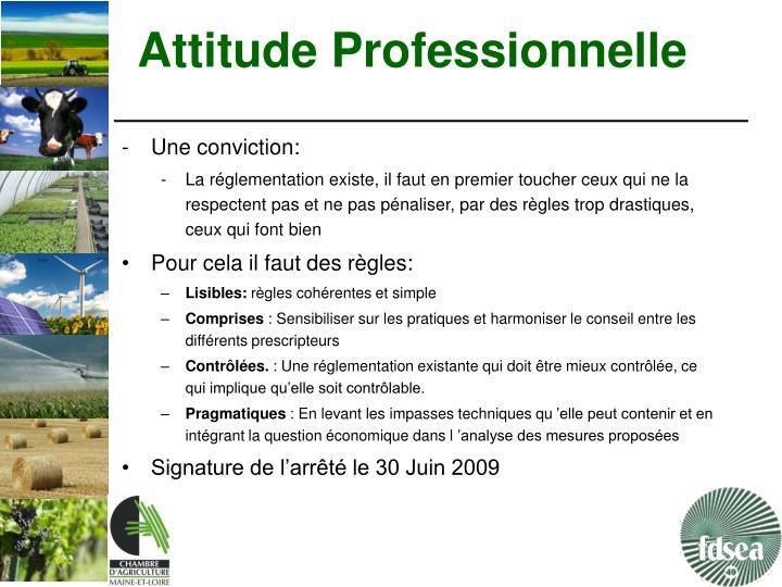 Attitude Professionnelle