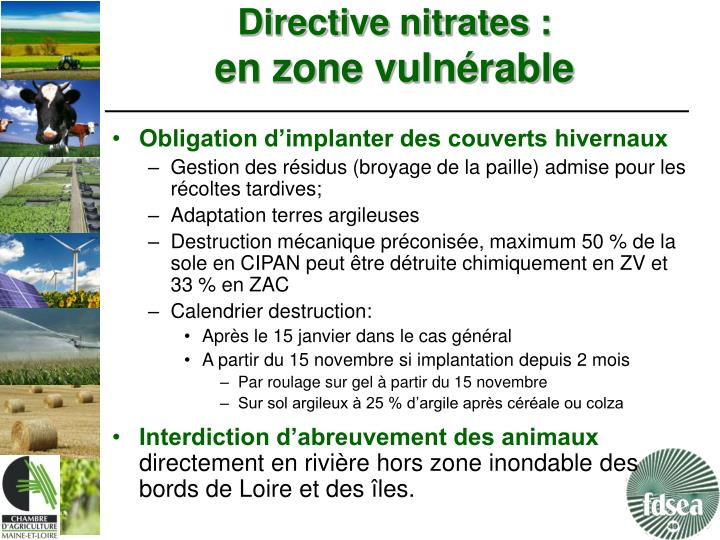 Directive nitrates :
