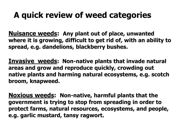 A quick review of weed categories
