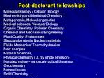 post doctorant fellowships
