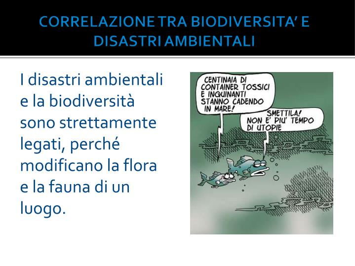 I disastri ambientali e la biodiversità sono strettamente legati, perché modificano la flora e la fauna di un luogo.
