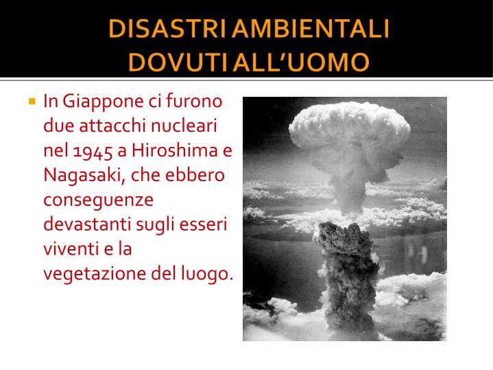 In Giappone ci furono due attacchi nucleari nel 1945 a Hiroshima e Nagasaki, che ebbero conseguenze devastanti sugli esseri viventi e la vegetazione del luogo.