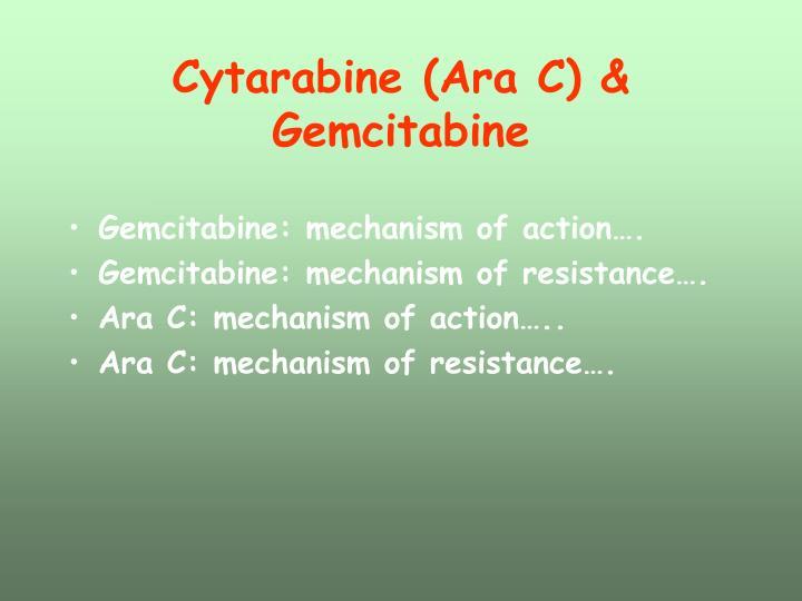 Cytarabine (Ara C) & Gemcitabine