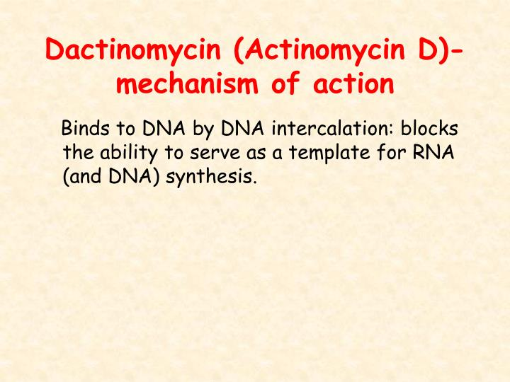 Dactinomycin (Actinomycin D)-mechanism of action