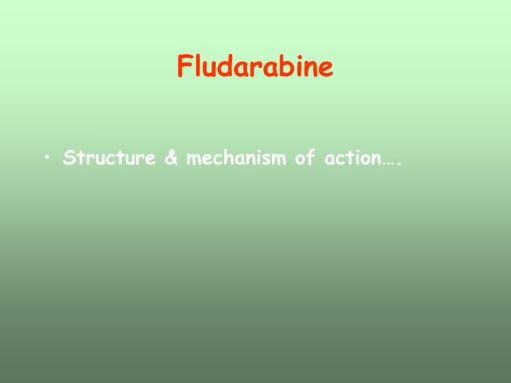 Fludarabine