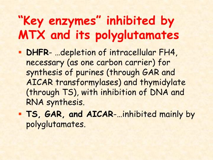"""Key enzymes"" inhibited by MTX and its polyglutamates"
