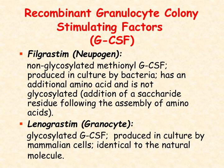 Recombinant Granulocyte Colony Stimulating Factors