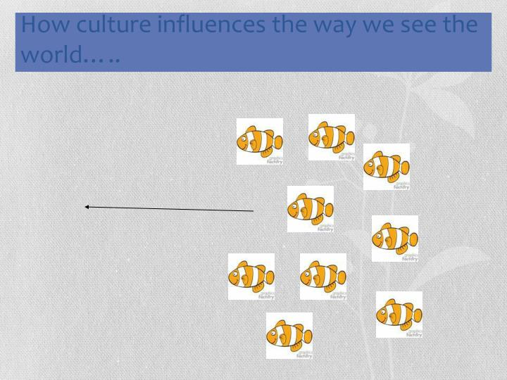 How culture influences the way we see the world…..