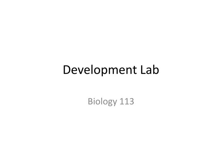 Development lab