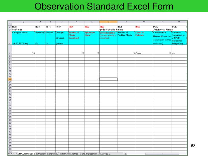 Observation Standard Excel Form