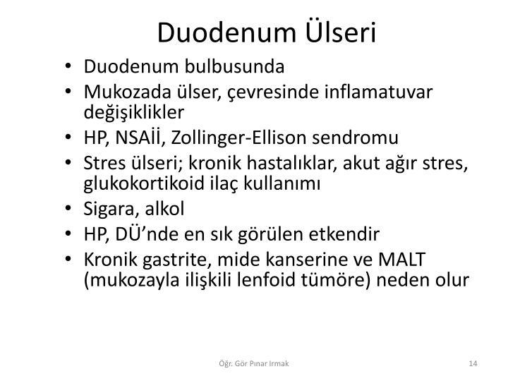 Duodenum lseri