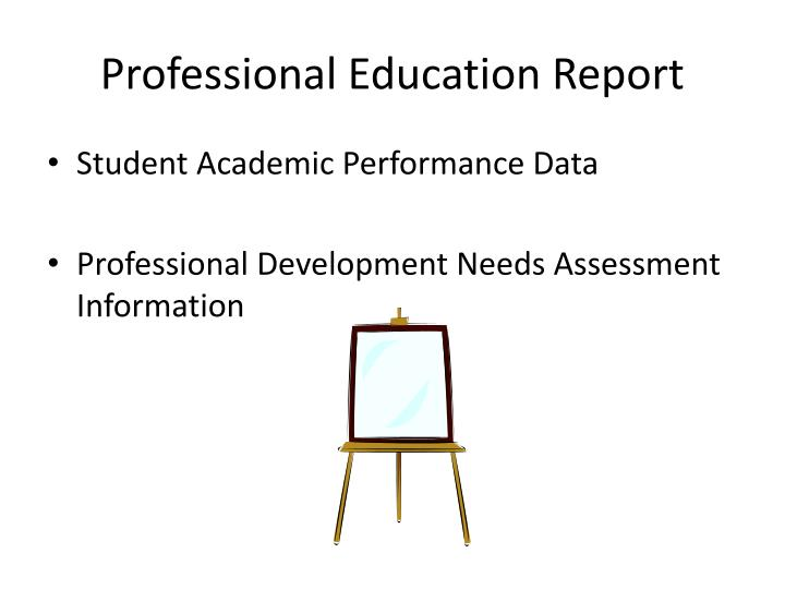 Professional Education Report