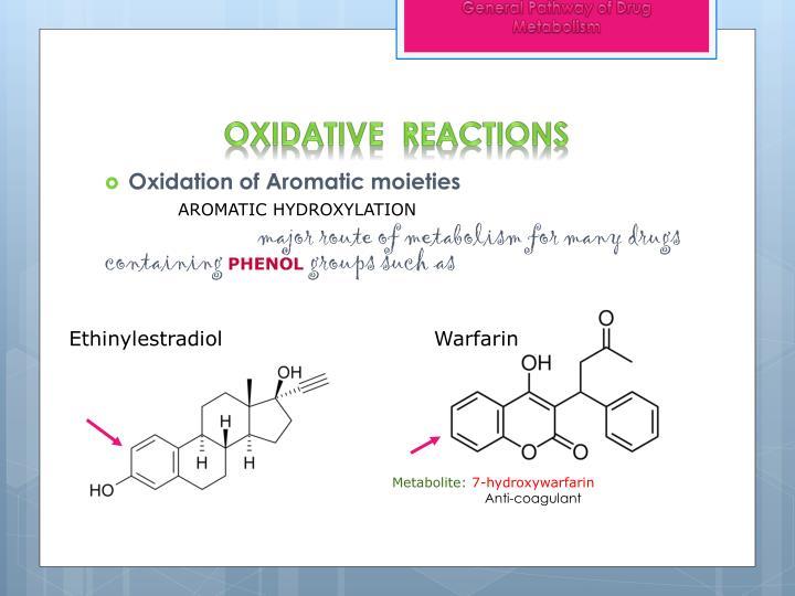 General Pathway of Drug Metabolism
